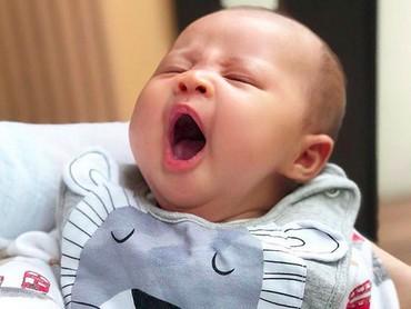 Hoam! Duh, Bun, aku ngantuk berat nih. (Foto: Instagram/ @raphaelmoeis_official)