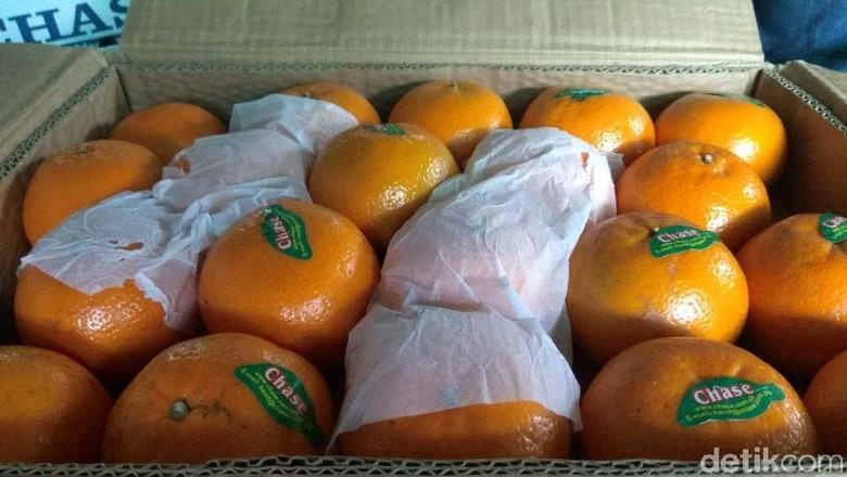 Jeruk Mandarin Menghilang Jelang Imlek, Omzet Pedagang Turun 50%