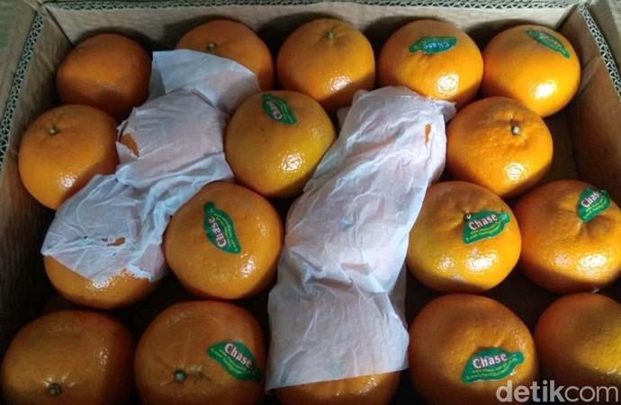 Jelang Imlek Jeruk Mandarin Menghilang, Kok Bisa Sih?