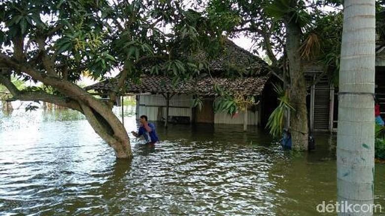 Sudah 3 Bulan 1.471 Rumah Warga di Demak Ini Tergenang Banjir