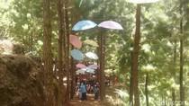 Tubing dan Hutan Pinus Jadi Wisata Andalan Bukit Pelangi di Ponorogo