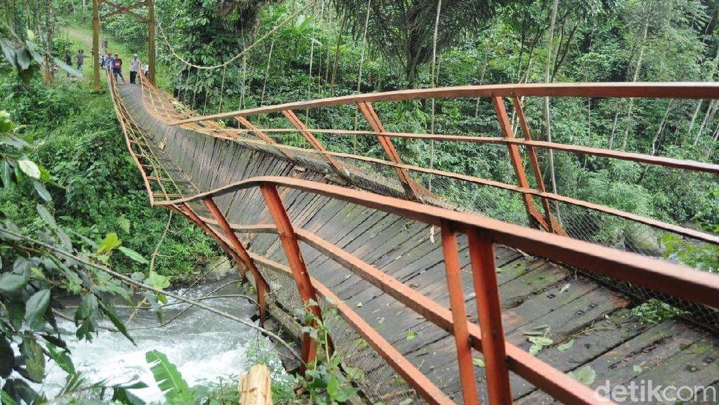 Tertimpa Pohon, Jembatan di Batang Ini Miring dan Nyaris Roboh