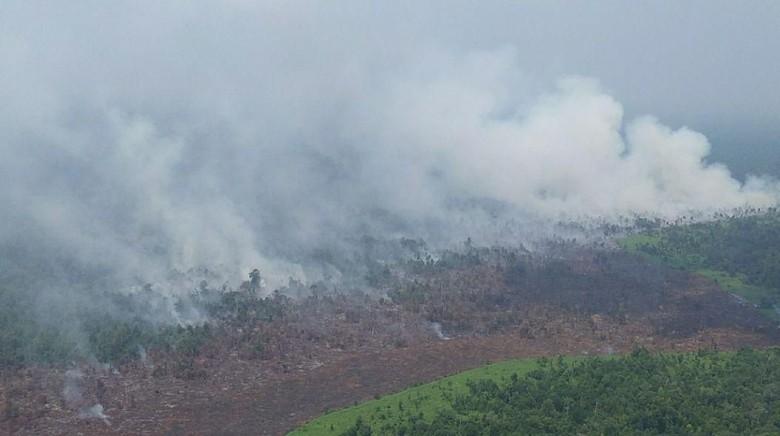 Puluhan Hektare Lahan di Kabupaten Meranti Riau Terbakar