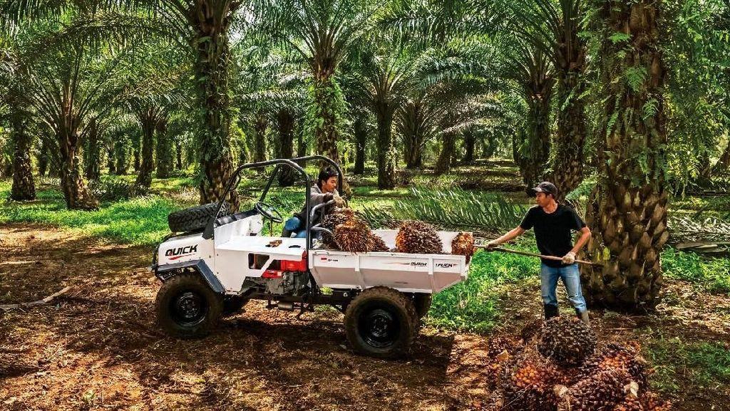 Diproduksi 4 Bulan, Mobil Ndeso Ini Sudah Dipesan 200 Unit