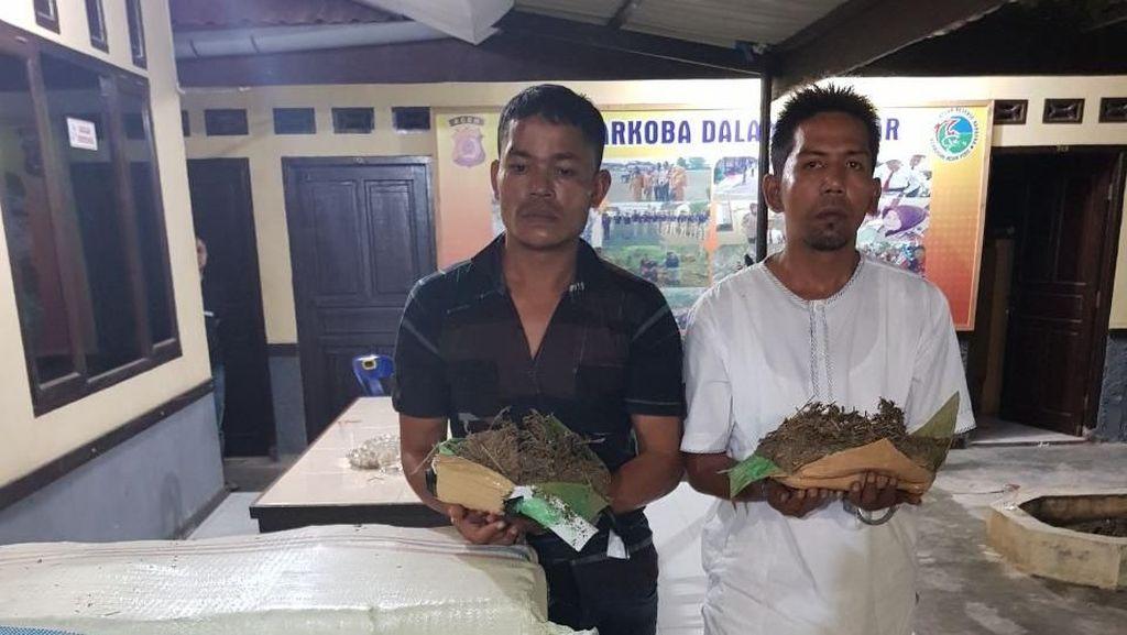 Polisi Aceh Gagalkan Penyelundupan 400 Kg Ganja ke Jakarta