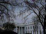 Tabrak Barikade Gedung Putih, Seorang Wanita Ditangkap
