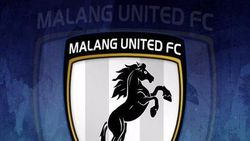 Lomba Logo Malang United yang Ramai Dibahas Netizen