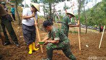 Pemkab Trenggalek Tanam Kedelai di Hutan Kejar Taget Swasembada