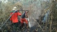 Lahan Terbakar di Riau Meningkat Jadi 749 Hektare