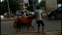 Kuda Mengamuk di Jalan Raya Bikin Geger Kota Palembang
