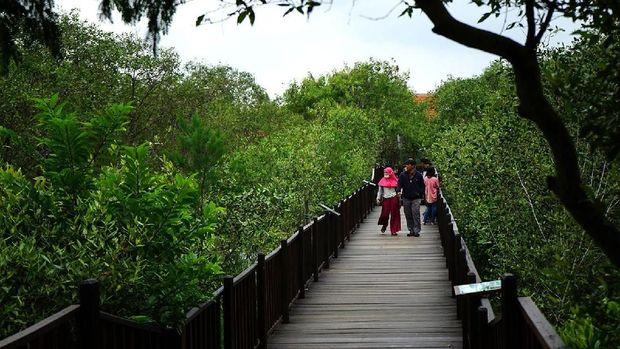Risma Siapkan Rp 17 M untuk Bebaskan Lahan Kebun Raya Mangrove