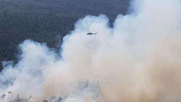 Asap Membubung, Ini Penampakan Hutan Terbakar di Riau