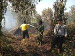 Bakar Hutan untuk Buka Kebun Sawit, Warga Riau Ditangkap