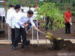 Revitalisasi Sungai Citarum, Jokowi Tanam Pohon