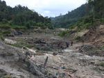 5 Penambang Timah Ilegal Ditangkap di Konservasi Bukit Mangkol
