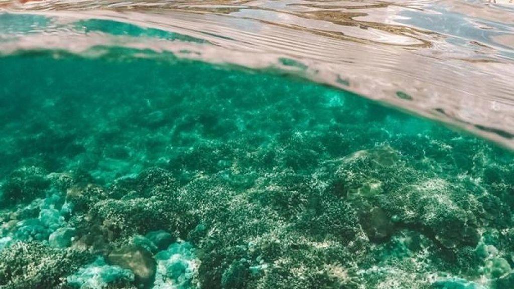 Ya Tuhan, Indahnya Alam Bawah Laut Nusa Penida
