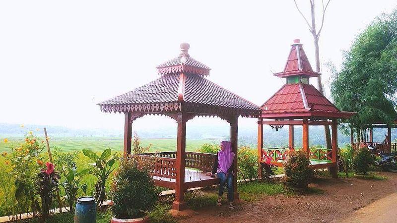 Sawah zaman now ini terletak di Kabupaten Semarang, Yogyakarta, dan Bali. Kalau yang ini ada di Desa Kemetul, Kecamatan Susukan, Kabupaten Semarang (wullan_ess/Instagram)