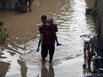 Bengawan Solo Siaga Kuning, Air Meluber ke Pemukiman dan Sawah