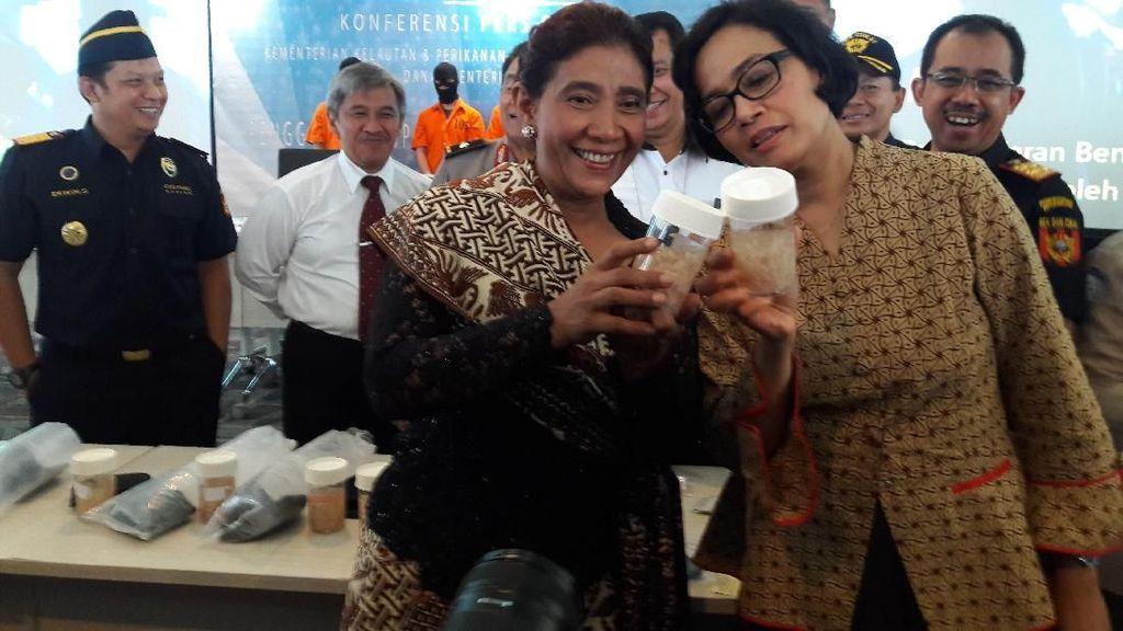 Sri Mulyani dan Susi Gagalkan Penyelundupan 71.982 Bayi Lobster