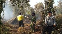Buka Lahan dengan Cara Dibakar, 4 Orang di Riau Jadi Tersangka