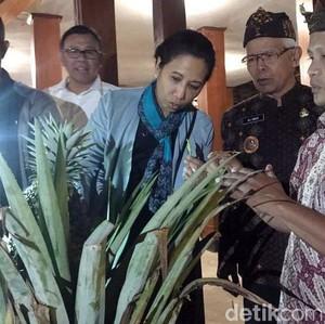 Menteri Rini Kunjungi Desa Binaan BUMN