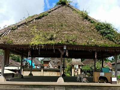 Desa Bali Ini Anti Poligami