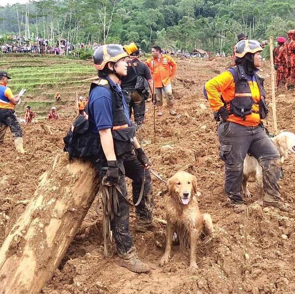 Korban Meninggal Longsor Brebes Jadi 11 Orang