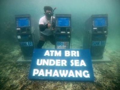 Kata Peneliti Terumbu Karang Soal Mesin ATM di Bawah Laut Pahawang