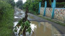 Pohon Pisang Hiasi Jalan Rusak di Cihampelas Bandung Barat