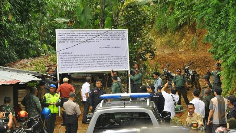 Hutan 362 Hektare di Puncak Bogor yang Dikuasai Warga Disegel KLHK