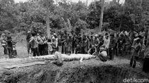 Cerita Ngeri Buaya Terkam Warga di Penjuru Indonesia