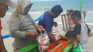 Cuaca Buruk, Pendapatan Nelayan di Belitung Timur Turun Drastis