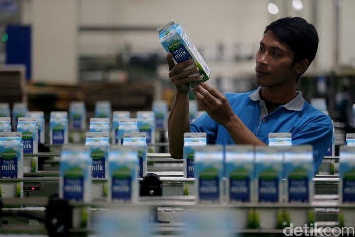 Pekerja melakukan proses quality control di Pabrik PT Greenfields Indonesia yang berlokasi di Desa Palaan, Kecamatan Ngajum, Kabupaten Malang.