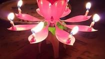 Wouw! Lilin Ulang Tahun Bentuk Bunga Lotus Bernyanyi Ini Sedang Hits