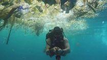 Pembelajaran dari Laut di Bali yang Tercemar Sampah