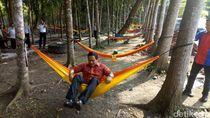 Menghidupkan Lagi Eks Kebun Binatang Tinjomoyo Semarang