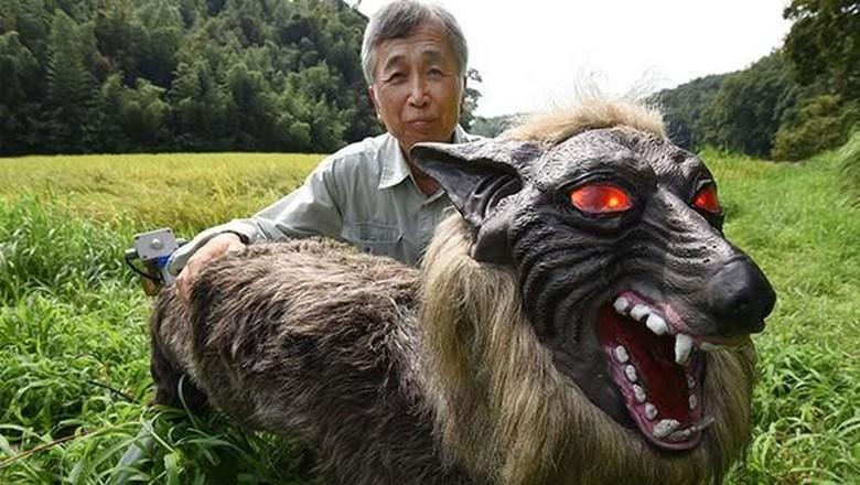 Ini Penampakan Seram Serigala Monster yang Jaga Sawah di Jepang