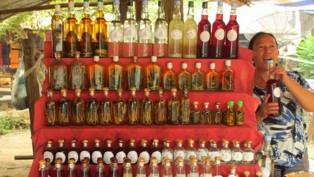 Beginilah Whisky Ular di Laos