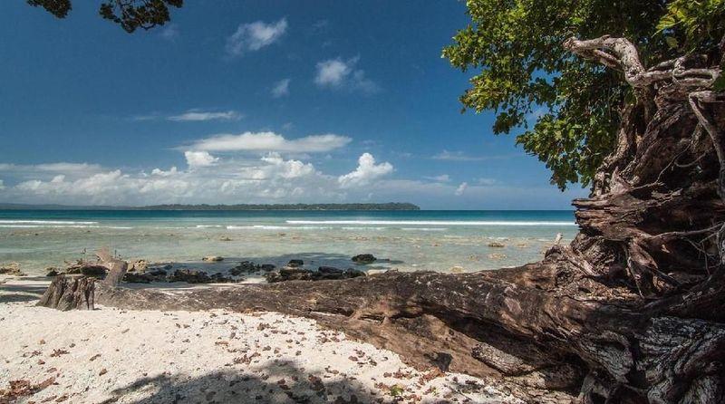 Namanya Pulau Ross, berada di Teluk Benggala, Kepulauan Andaman, India. (Neelima Vallangi/BBC travel)