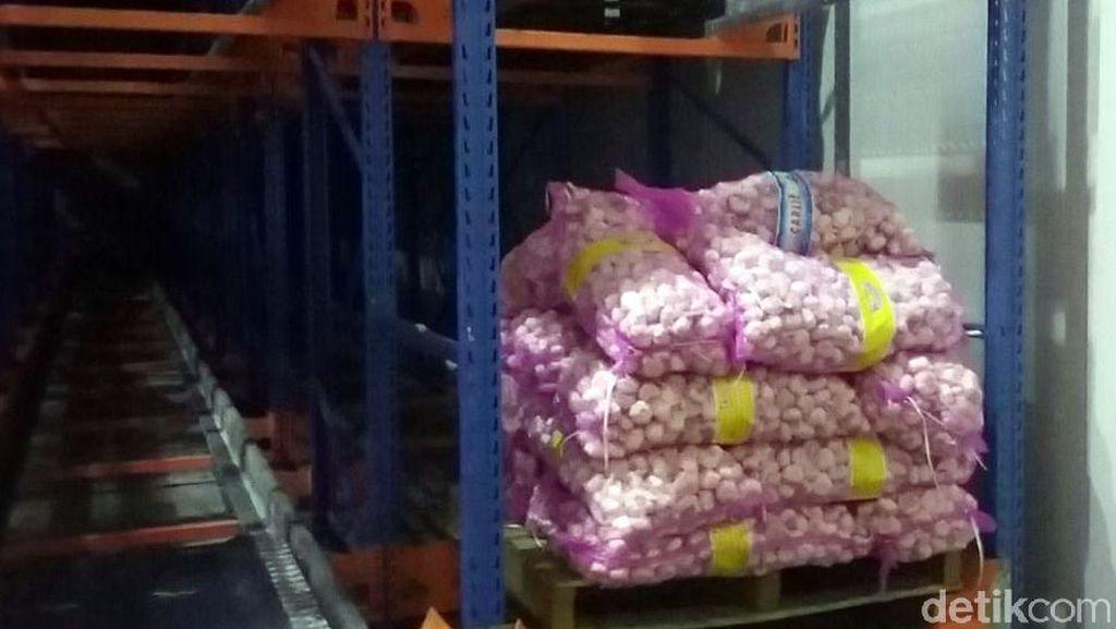 Bibit Bawang Putih yang Disegel Kemendag Diimpor dari China