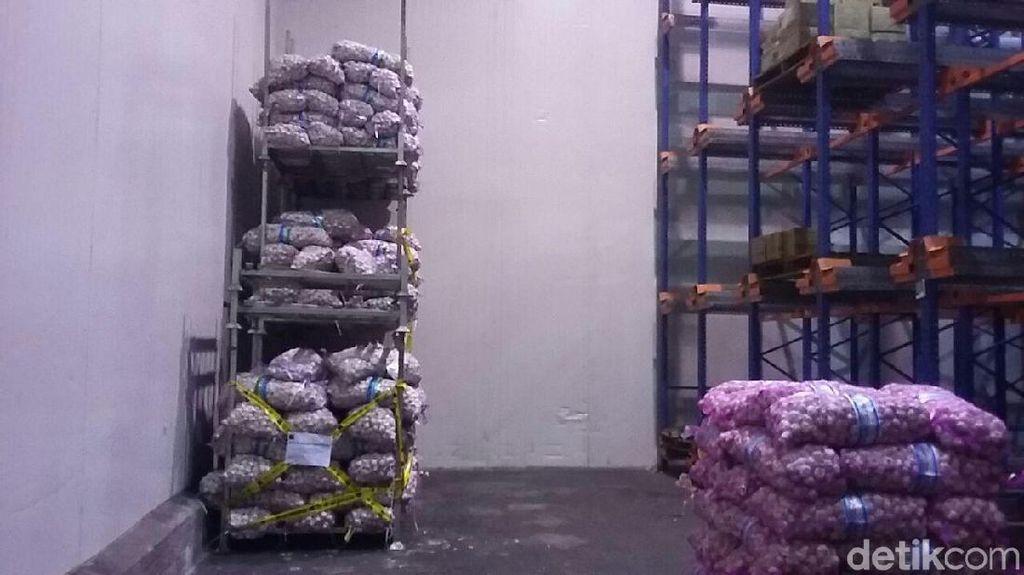 Kemendag Segel 5 Ton Bibit Bawang Putih
