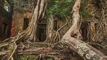 Kisah Pulau Angker di Samudera Hindia yang Kamu Belum Tahu