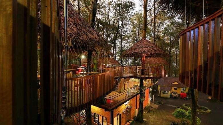 Kopeng Treetop Adventure Park (jendeladimas/instagram)