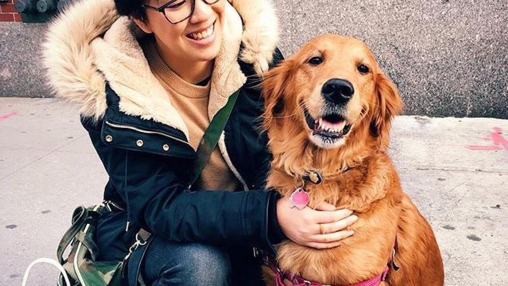 Foto: Anjing yang Gemar Peluk Orang di New York
