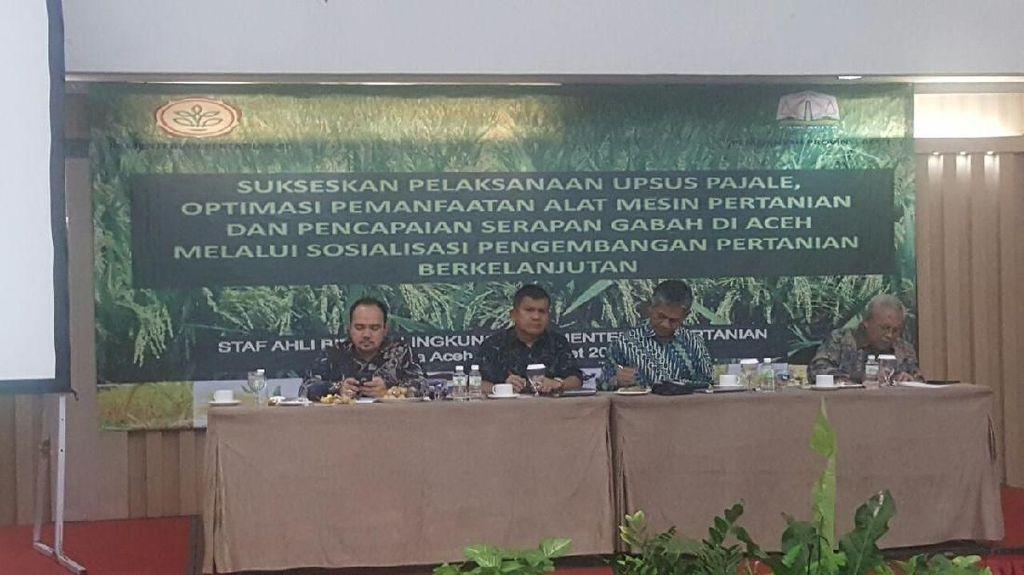 Strategi Kementan Jadikan Aceh Lumbung Pangan Nasional