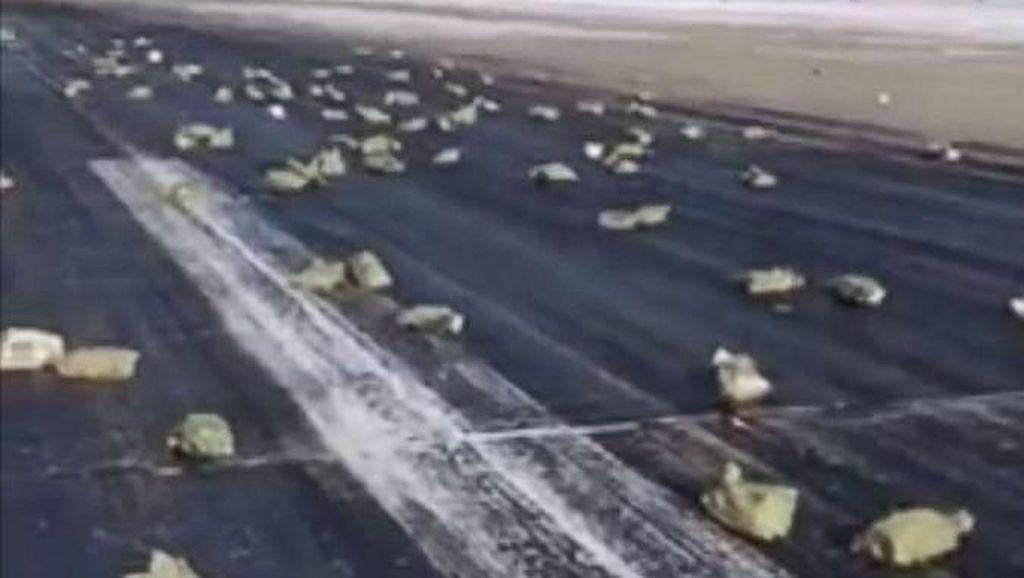 Asal Muasal 3 Ton Emas yang Jatuh dari Langit Rusia