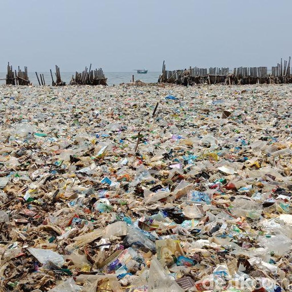 Before After Lautan Sampah Teluk Jakarta yang Sedang Dibersihkan