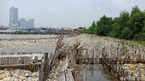 Jorok! Sampah Rumah Tangga Menumpuk di Kawasan Teluk Jakarta