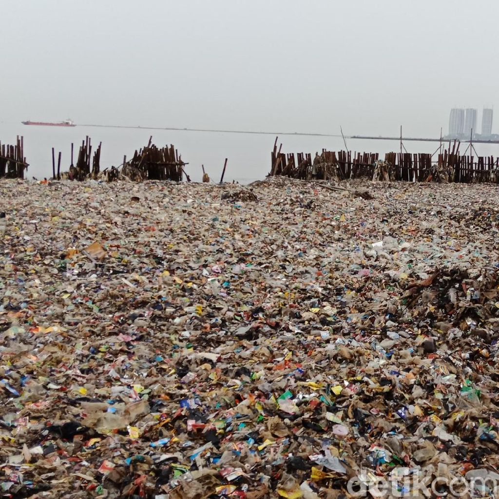 Kondisi Terkini Setelah 16 Ton Sampah di Teluk Jakarta Diangkut