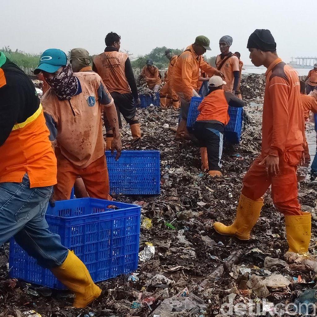 Faktor Cuaca dan Ombak Jadi Kendala Angkat Sampah Teluk Jakarta